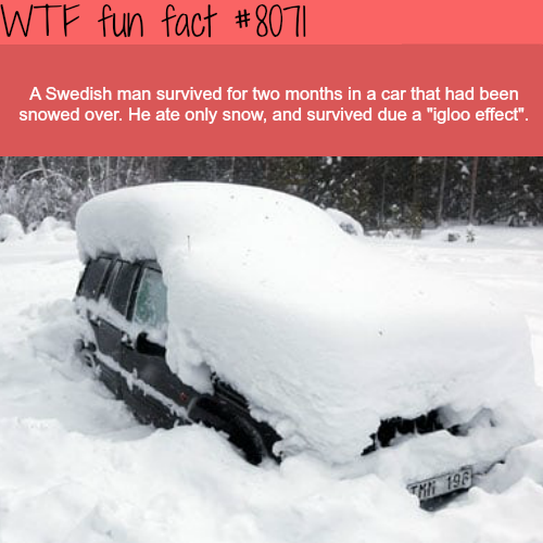 Swedish man survived in a car under the snow for two months - WTF facts