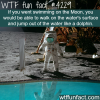 swimming on the moon wtf fun facts