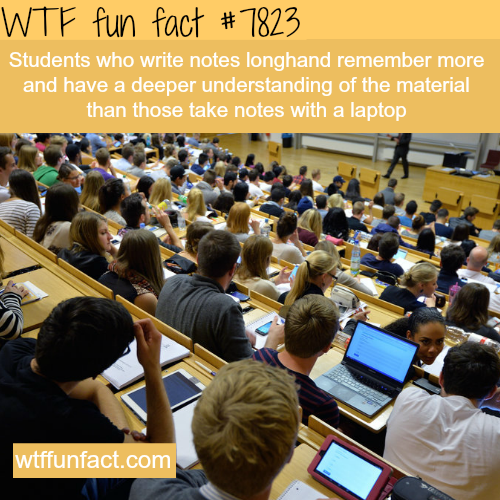 Taking notes with your laptop - WTF fun facts
