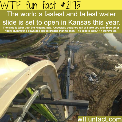 Tallest and fastest water slide -WTF fun facts