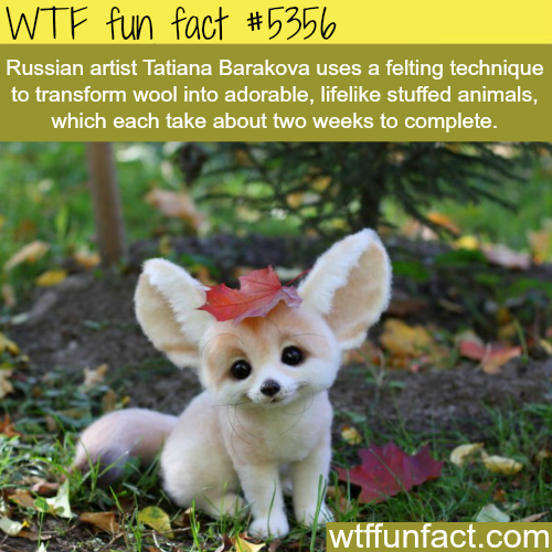 Tatiana Barakova art work - WTF fun facts