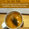 tea bags that look like a fish wtf fun facts