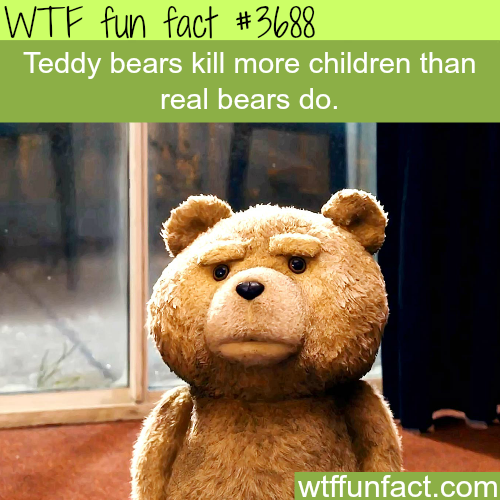 Teddy bears kill more children than real bears -  WTF fun facts