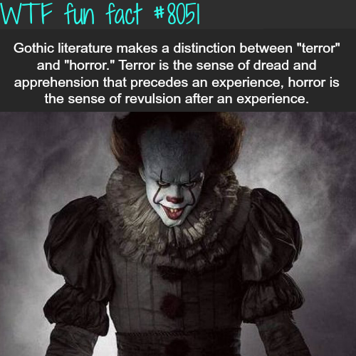 Terror and horror - WTF fun fact
