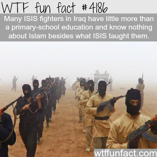 Terrorism has no religion -  WTF fun facts