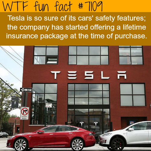 Tesla wants to offer lifetime insurance with the car purchase - WTF fun facts