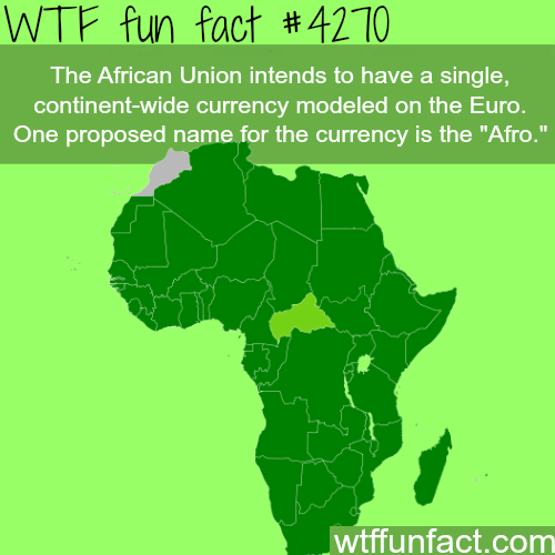 The African Union currency: Afro -  WTF fun facts