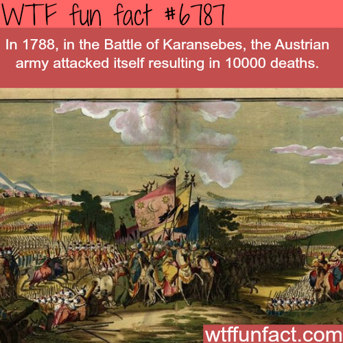 The battle of Karansebes - WTF fun fact