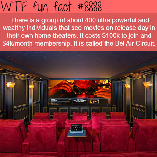 The Bel Air Circuit - WTF fun facts