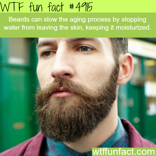The benefits of beards - WTF fun facts
