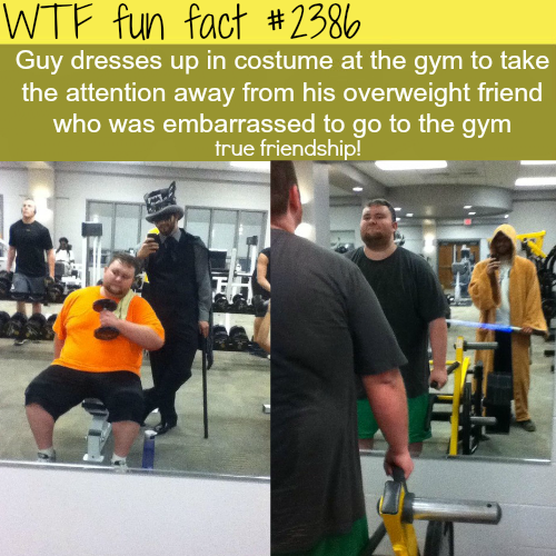 the best example of true friendship -WTF funfacts