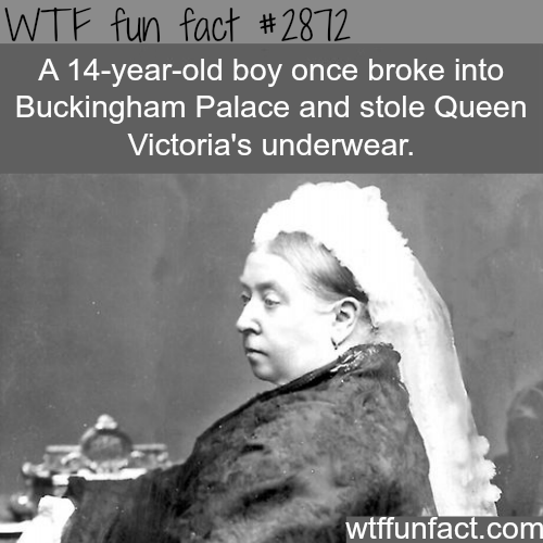 The boy who stole Queen Victoria's underwear -WTF fun facts