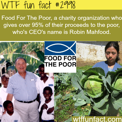 The CEO of food for the poor is Robin Mahfood -WTF fun facts