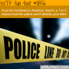 the chances of getting away with murder wtf fun