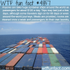 the container ships tourism wtf fun facts