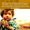 the cost of eliminating world hunger wtf fun