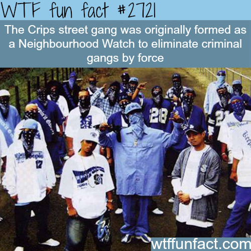The Crips Street Gang -WTF funfacts