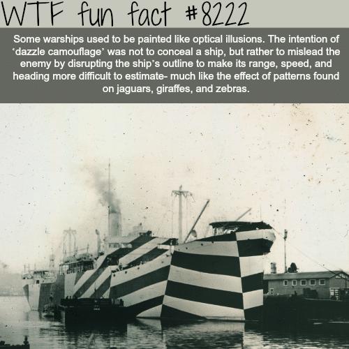 The Dazzle Comouflage - WTF fun facts