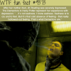 the dementors in harry potter wtf fun facts
