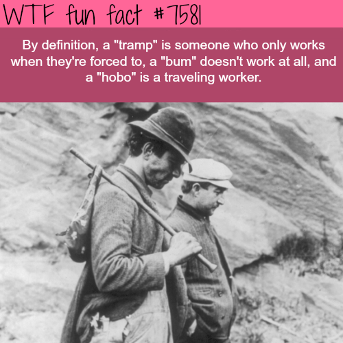 "The difference between ""hobo"" and ""Bum"" - WTF fun facts"