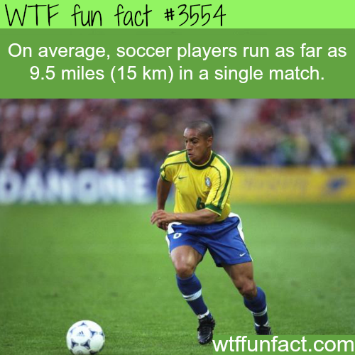 The distance that soccer players run in a single match - WTF fun facts
