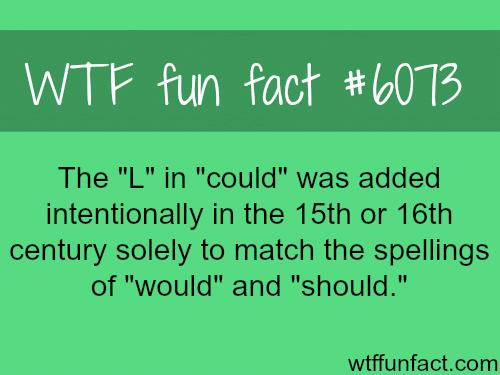 The English Language - WTF fun facts