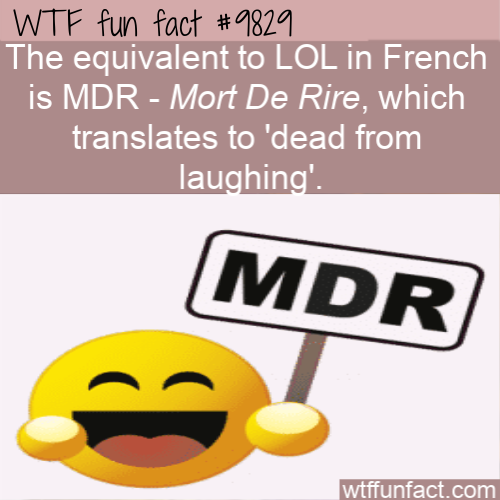 The equivalent to LOL in French is MDR - Mort De Rire