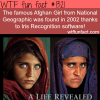 the famous afghan girl