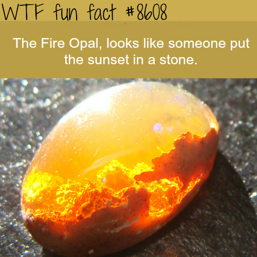 The Fire Opal - WTF fun facts