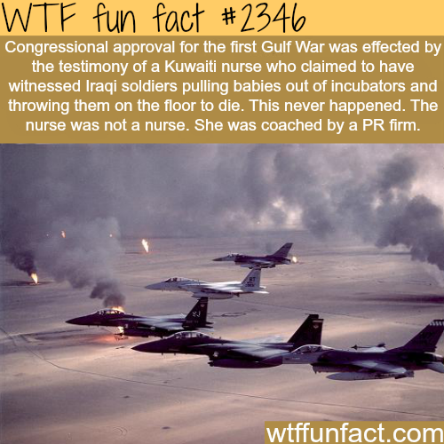 The first gulf war -WTF funfacts