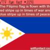 the flipino flag