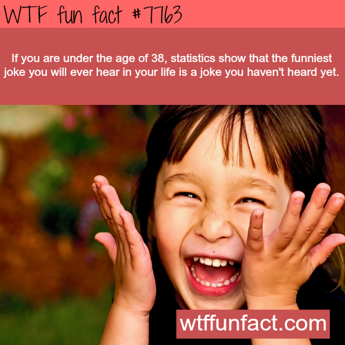 The funniest joke you will ever hear - WTF fun facts