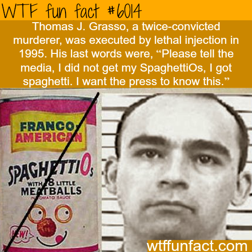 The funniest last words - WTF fun facts