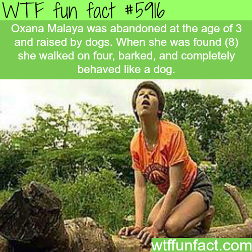 The girl that was raised by dogs - WTF fun facts