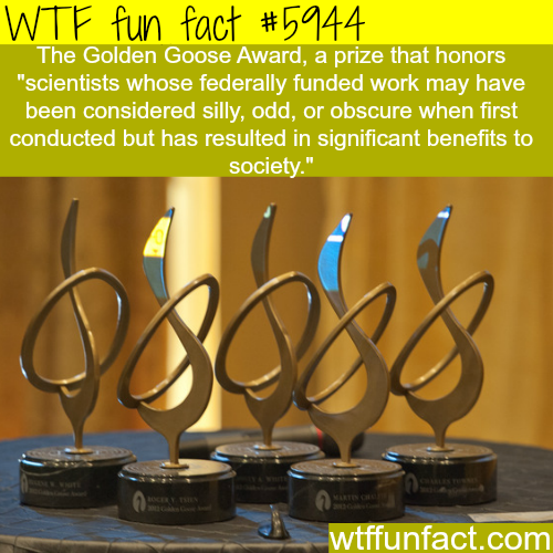 The Golden Goose Award - WTF fun facts