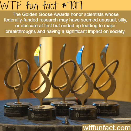 The Golden Goose Awards - WTF fun facts