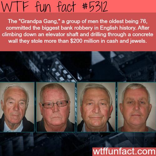 The Grandpa Gang - WTF fun facts