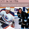 the gretzky brothers wtf fun fact