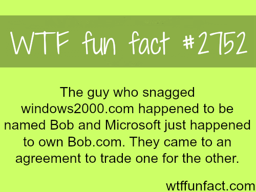 The Guy who Snagged Windows2000.com- WTF fun facts