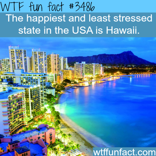 The happiest state in America -  WTF fun facts