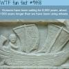 the history of sailing wtf fun fact