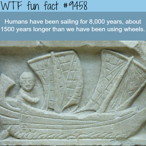 The history of sailing - WTF fun fact