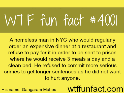 The homeless man that eats at the best restaurants in NYC - WTF fun facts