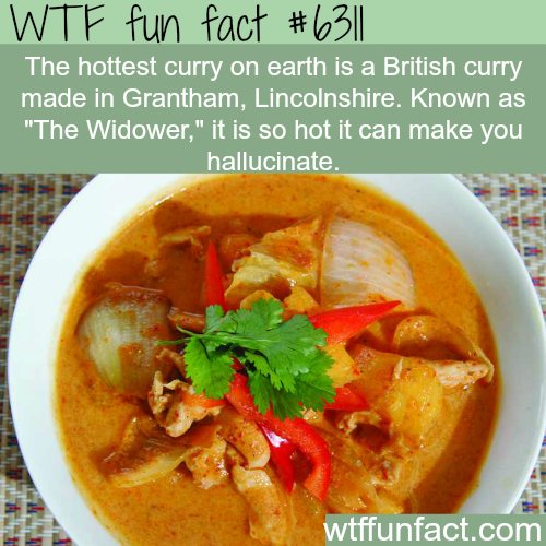 The hottest curry in the world - WTF fun facts