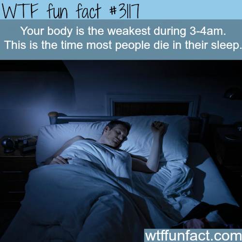 The hour most people die in their sleep -  WTF fun facts