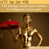 the human body contains gold wtf fun facts