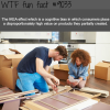 the ikea effect wtf fun facts