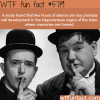 the importance of silence wtf fun facts