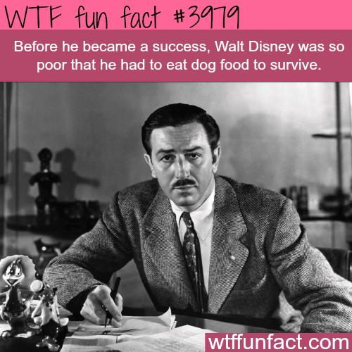 The inspiring success story of Walt Disney - WTF fun facts
