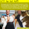 the largest cat in the world wtf fun facts